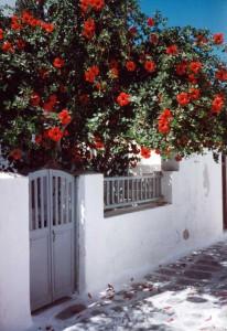 Typical Greek Island scenery